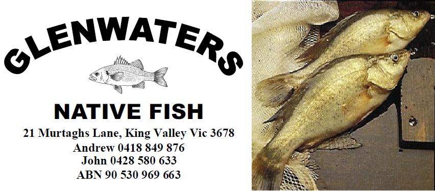 Glenwaters Native Fish